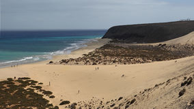 Risco del Paso beach, Fuerteventura, Canary islands, Spain. Never-ending sandy Risco del Paso beach is real highlight of Fuerteventura beaches. Because of good Stock Photography