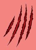 Riscos do furo da garra do monstro Elemento do projeto Imagem de Stock Royalty Free