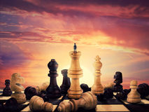 The rise of a chess player royalty free stock image