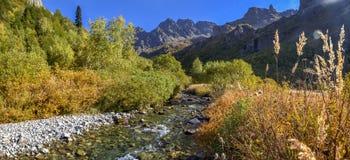 Riserva caucasica di biosfera Il fiume di Mzymta sfocia nel lago Kardyvach immagini stock libere da diritti
