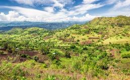 Riserva della foresta di Bonga in Etiopia del sud Fotografia Stock Libera da Diritti
