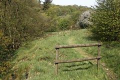 Riserva della valle RSPB di Combe Fotografia Stock Libera da Diritti