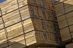 Riserva di legno immagine stock