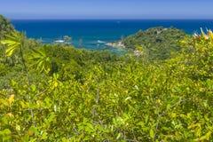 Riserva naturale affettuosa di Ferdinand, Seychelles fotografia stock