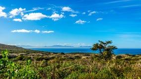 Riserva naturale del Capo di Buona Speranza vicino alla punta del sud del capo Peninsul Fotografia Stock