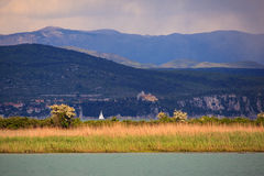 Riserva naturale del fiume di Isonzo Immagine Stock Libera da Diritti