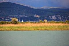 Riserva naturale del fiume di Isonzo Immagini Stock Libere da Diritti