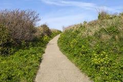 Riserva naturale del parco nazionale di Hastings immagini stock
