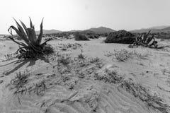 Riserva naturale dell'estremità del ` s di Gata-Nijar, Almeria L'Andalusia, Spagna Immagini Stock