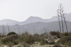 Riserva naturale dell'estremità del ` s di Gata-Nijar, Almeria L'Andalusia, Spagna Immagini Stock Libere da Diritti