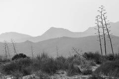 Riserva naturale dell'estremità del ` s di Gata-Nijar, Almeria L'Andalusia, Spagna Immagine Stock