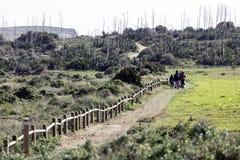 Riserva naturale dell'estremità del ` s di Gata-Nijar, Almeria L'Andalusia, Spagna Fotografia Stock Libera da Diritti