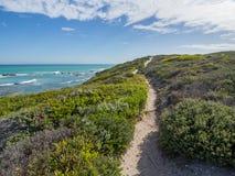 Riserva naturale di De Hoop - percorso di camminata che conduce attraverso le dune di sabbia all'oceano con vegetazione costiera fotografie stock