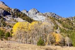 Riserva naturale di Queyras, Francia fotografie stock