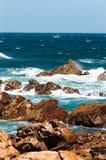Riserva naturale di Robberg, baia di Plettenberg, Sudafrica Immagini Stock