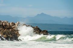 Riserva naturale di Robberg, baia di Plettenberg, Sudafrica Fotografie Stock