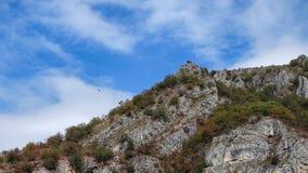 Riserva naturale Uvac fotografia stock libera da diritti