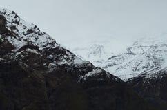 Riserva nazionale di RÃo Blanco, Cile centrale, un'alta valle di biodiversità nel Los le Ande Immagini Stock Libere da Diritti