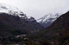 Riserva nazionale di RÃo Blanco, Cile centrale, un'alta valle di biodiversità nel Los le Ande Immagine Stock