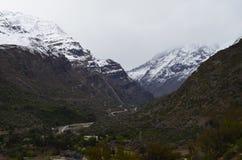 Riserva nazionale di RÃo Blanco, Cile centrale, un'alta valle di biodiversità nel Los le Ande Immagine Stock Libera da Diritti