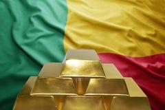 Riserve auree del Benin Fotografie Stock Libere da Diritti