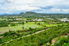 Risfält från bästa sikt i Thailand Royaltyfri Bild