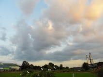 Risfält och himmel Arkivfoto