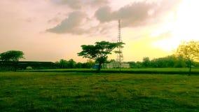 Risfält och himmel royaltyfri bild