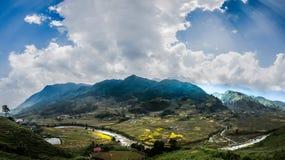 Risfält på terrasserat Arkivfoto