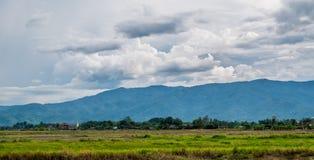 Risfält som är förberedda för växande ris Den enkla livsföringen av Royaltyfria Bilder