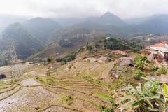 Risfält som terrasseras på av Cat Cat Village, Vietnam Arkivbild