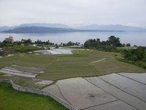 Risfält Sumatra Arkivfoto