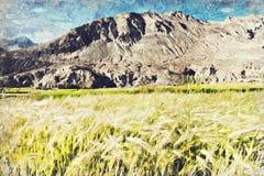 Risfältfält med mountian, Leh Ladakh, Indial digital röd twirl för abstactkonst djupt royaltyfri bild