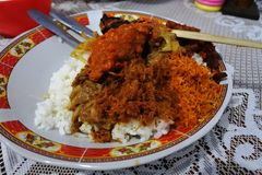 Rishöna från Lombok Arkivfoton