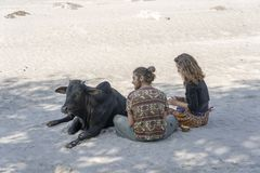 Young guy with a girl is resting on a hot sunny day on the banks of the river Ganga with the sacred cow in the city of Rishikesh,. RISHIKESH, INDIA - NOVEMBER 06 stock photos