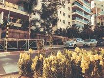 RISHON LE锡安,以色列- 2018年4月23日:在路的汽车在一个晴天在Rishon Le锡安,以色列 免版税库存照片