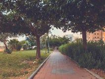 RISHON LE СИОН, ИЗРАИЛЬ - 30-ОЕ АПРЕЛЯ 2018: Улица в Rishon LeZion, Израиле Стоковые Фотографии RF