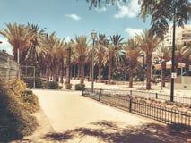 RISHON LE ZION, ISRAEL - 18 DE JUNHO DE 2018: Vista do Central Park em Rishon Le Zion, Israel imagens de stock royalty free