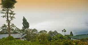 Rishop Landcsape Images stock