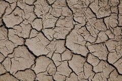 Risico van het globale verwarmen - droge grond met barsten stock afbeelding