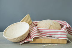 Rising bread dough Stock Images
