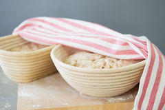 Rising bread dough Stock Photo
