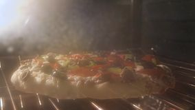 Rising Crust Pizza. Pizza rising in the oven 4k time-lapse stock footage