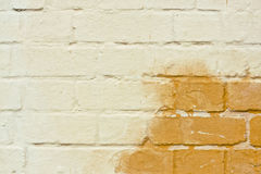 Rising damp Royalty Free Stock Image