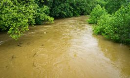 Rising Flood Waters of the Roanoke River – May 18th, 2018. Rising flood waters of the Roanoke River located in Smith Park, Roanoke, Virginia, USA on May 18th Stock Photos