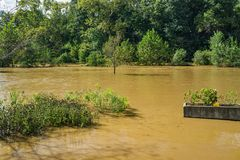 Rising Waters of the Roanoke River Greenway Stock Image
