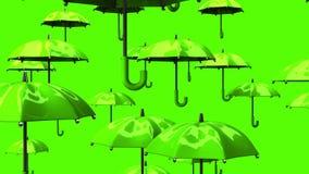 Rising Green Umbrellas stock video