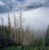 Rising mist in the Never Summer Range, Rocky Mountain National Park, Colorado Stock Images