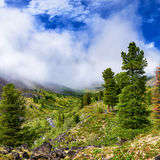 Rising mist over valley of mountain stream Royalty Free Stock Photo