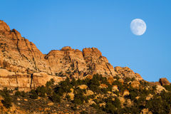 Rising moon Royalty Free Stock Image